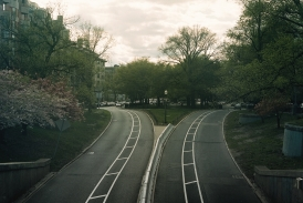 20150324184730-two-roads-decision-fork-road-city-trees